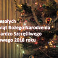 Wesołych Świąt i Szczęśliwego Nowego 2018 Roku